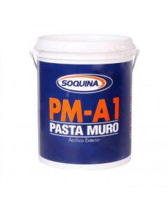 PASTA MURO PM A-1 6 KG